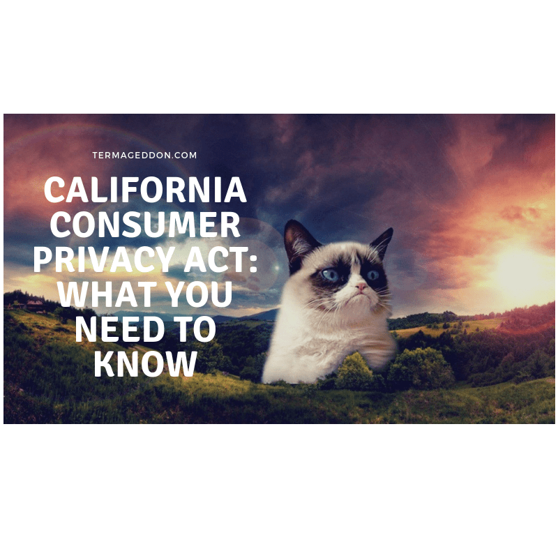 Image of grumpy cat in a field with a beautiful sky background. Caption states: California Consumer Privacy Act (CCPA): what you need to know.