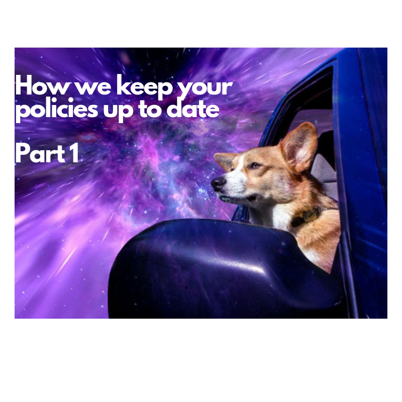 "This image shows a corgi looking out the window of a car into space. It also has the following caption: ""how we keep your policies up to date: part 1."""