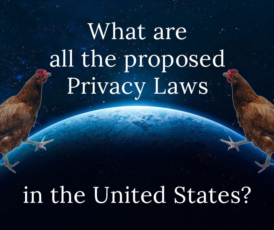 "This image shows Earth with two hens standing on it. It also states ""what are all the proposed privacy laws in the United States."""