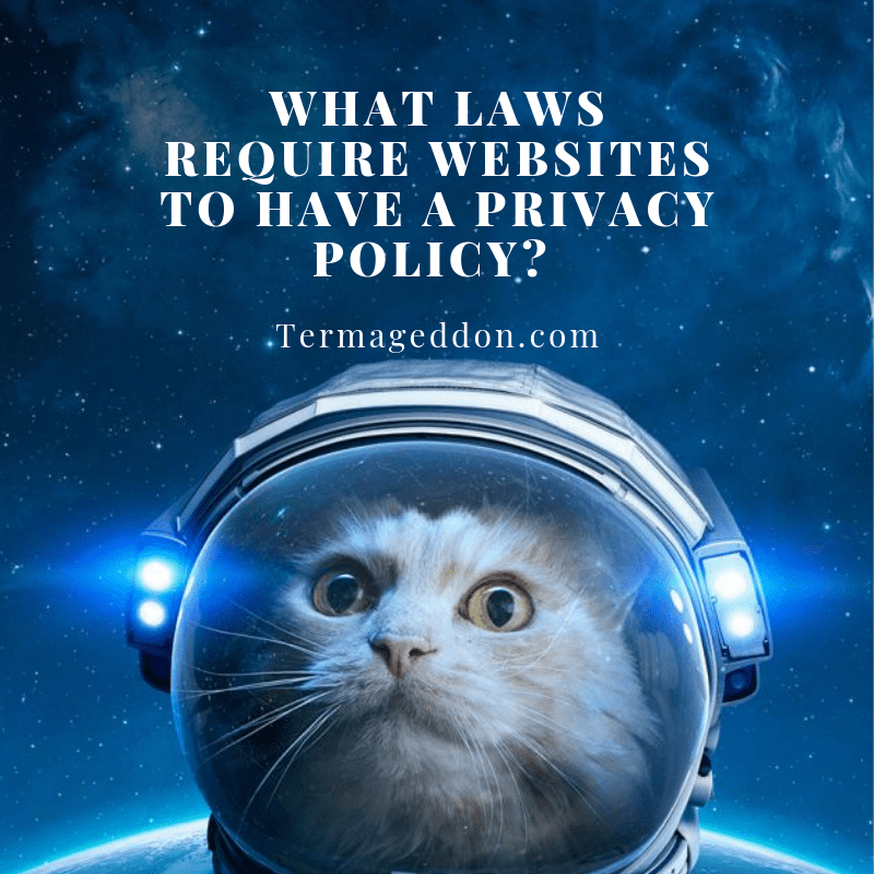 What laws require websites to have a Privacy Policy?